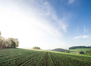 Gesundes und verträgliches Brot kaufen - Bio-Hofbäckerei Mauracher GmbH