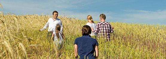 Für unser Brot verwenden wir Getreidesorten aus dem Mühlviertel - Bio-Hofbäckerei Mauracher GmbH